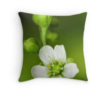Venus flower Throw Pillow