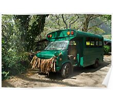 Grass skirted bus Poster