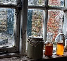 The Farmer's Kitchen Window  by Selina Ryles