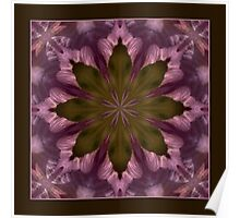 Flower of the Dragonfly - Shawl Poster
