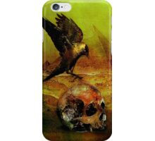 The crow of Egyptian plains iPhone Case/Skin