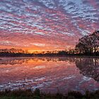 Reflections at Dawn by Bonnie T.  Barry