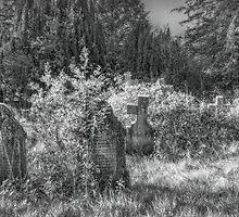 A Quiet Corner by maratshdey