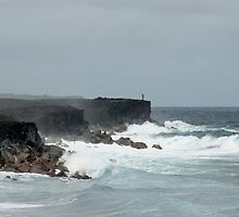 Kalapana rugged oceanscape by photoeverywhere