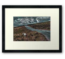 White Horse Exmoor Framed Print