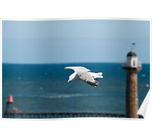 Seagull flying past a lighthouse Poster