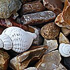 Shells and Stones by lisa1970