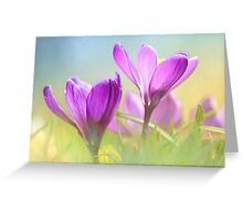 Gorgeous Crocuses Greeting Card