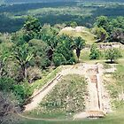 Aerial View of Mayan Pyramid, Belize, Central America by lenspiro
