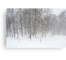 winter snowstorm Canvas Print