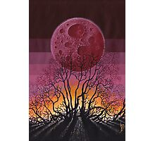 Landscape Red Moon Photographic Print