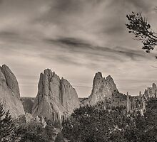 Colorado Garden of the Gods Mono Tone View by Bo Insogna