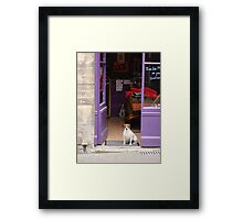 Minding The Shop - Two French Dogs In Boutique Framed Print