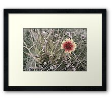 Surviver Framed Print