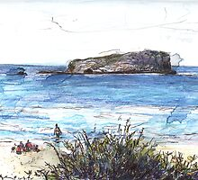 Cook Island From Fingal Head by John Douglas