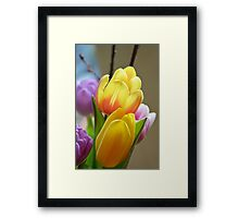 Happy Spring Tulips Framed Print