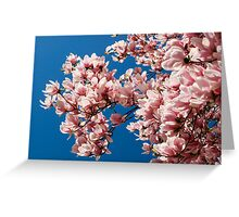 Welcome the Magnolia (Landscape) Greeting Card