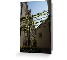 Any Space Can Be a Garden - Creative Urban Gardening From Amsterdam Greeting Card
