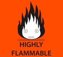 Highly Flammable and Talkative Flame by lucabratsi16