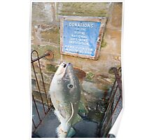 Fish shaped donations box Poster