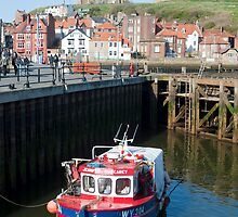 Upper harbour at Whitby by photoeverywhere