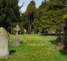 Pennington cemetry by photoeverywhere