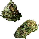420 Buds #71 by sensameleon