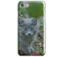 Grey Kitten iPhone Case/Skin
