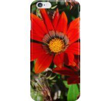Fiery Daisies iPhone Case/Skin