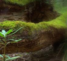 Mossy Log Sticker