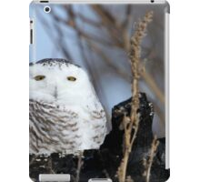 Rising from the ruins iPad Case/Skin