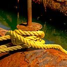 ROPE AND RUST by TJ Baccari Photography