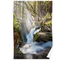 Sol Duc Falls Poster