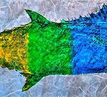 Prideful Mackerel - P-Town - Spectrum by IslandFishPrint
