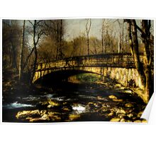 Bridge in The Great Smoky National Park Poster