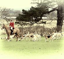 Running with Hounds by Country  Pursuits