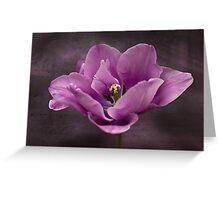 Tiptoe around the tulip Greeting Card