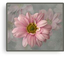 Frosty pink Canvas Print