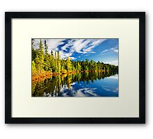 Forest reflecting in lake Framed Print