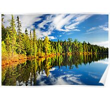 Forest reflecting in lake Poster