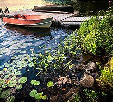 Rowboat at lake shore at dusk by Elena Elisseeva