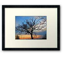 #tree house Framed Print