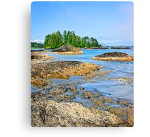 Coast of Pacific ocean, Vancouver Island, Canada Canvas Print