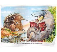 Animal lesson Poster