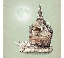 The Snail's Dream Photographic Print