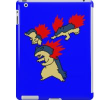 Cyndaquil, Quilava and Typhlosion iPad Case/Skin