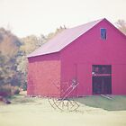Red New Hampshire Barn by Elizabeth Thomas