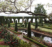 The Italian Garden by Carol Bailey White