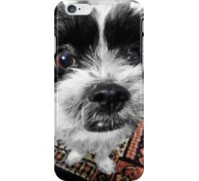 The Black and White Dog iPhone Case/Skin