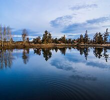 Alan's Pond by Richard Bozarth